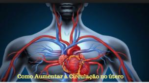 como aumentar a circulação sanguínea no útero